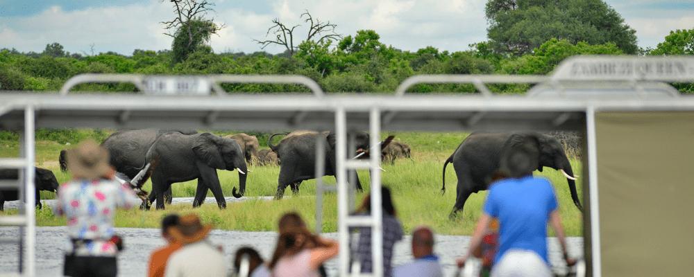 A stay on the Zambezi Queen