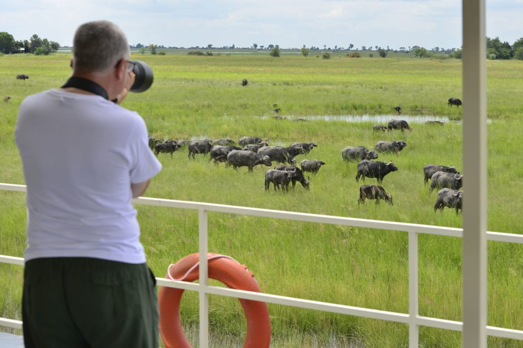 Photographic safari, Chobe River