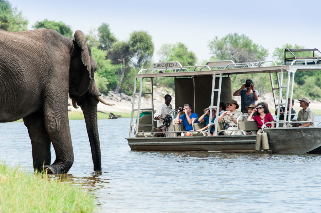 river safari at Chobe National Park