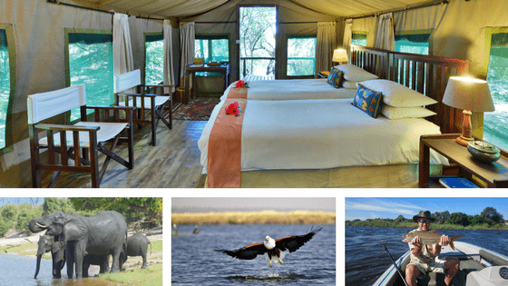 Ichingo Chobe River Lodge | Activities