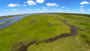 Chobe River | Ichingo Chobe River Lodge