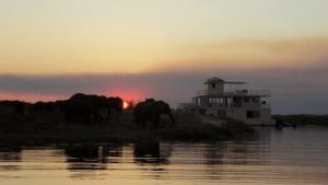 Chobe Princess African River Safari