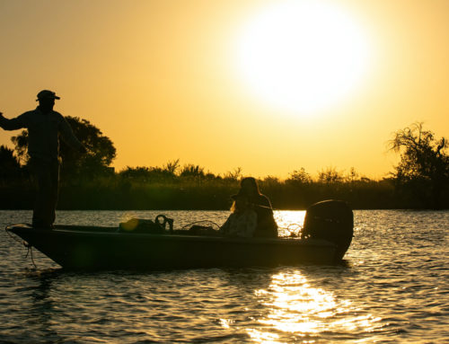 Expert tips to catch a Tigerfish on the Chobe River