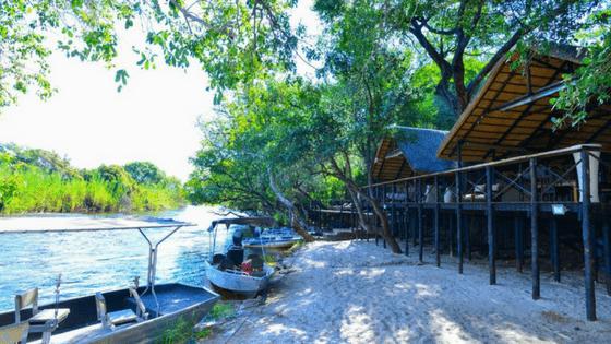 Ichingo Chobe River Lodge | World Travel Awards