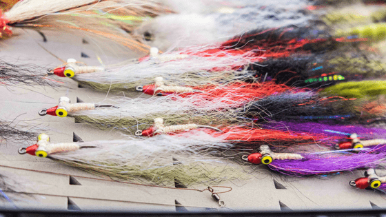 5 Pro Tips To Improve Your Fly-Fishing Success - Zambezi