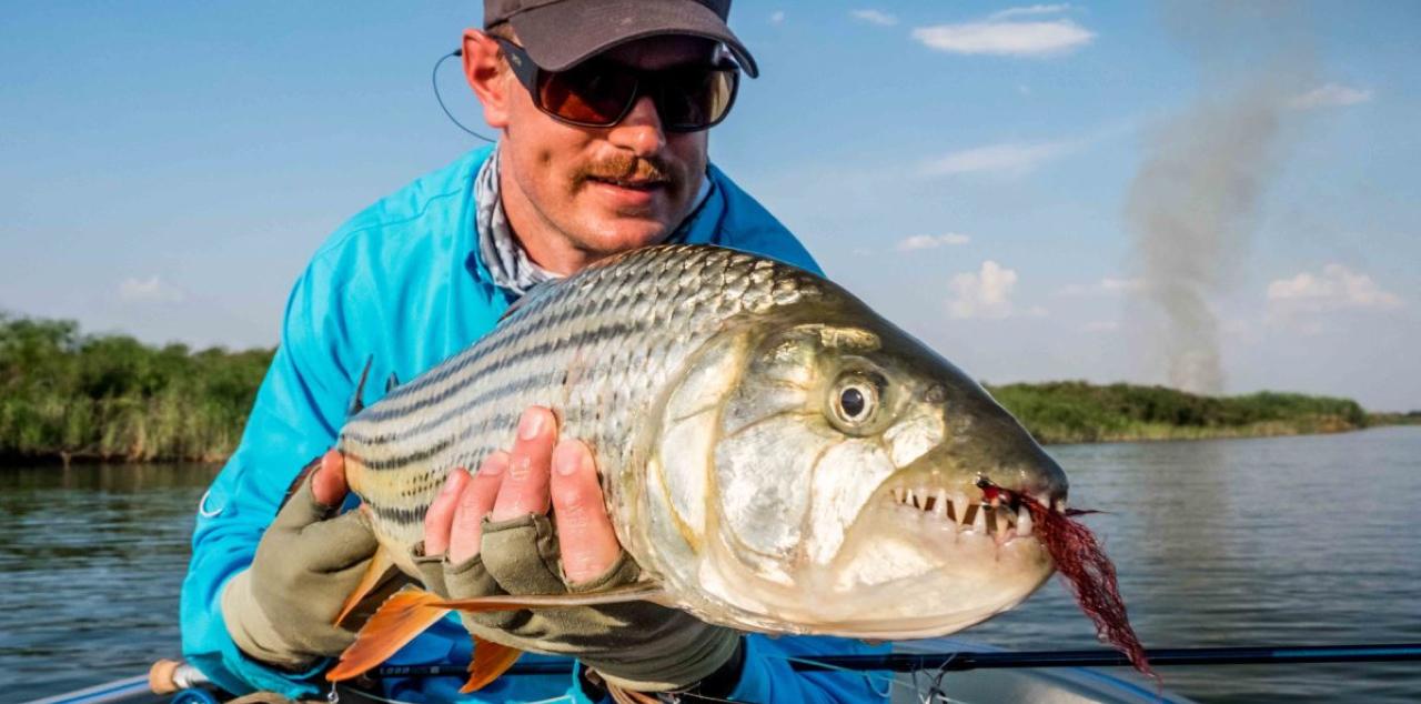 Tigerfish Fishing