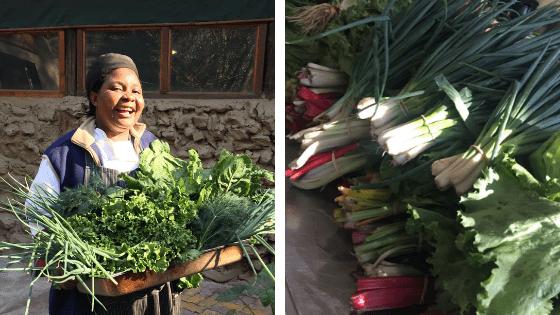 Fresh Vegetables at Ichingo Chobe River Lodge