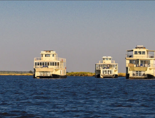 Chobe River Fairy Tale Fleet