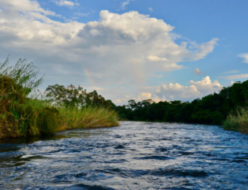 Can Moon Phase Affect Your Fly Fishing Success?