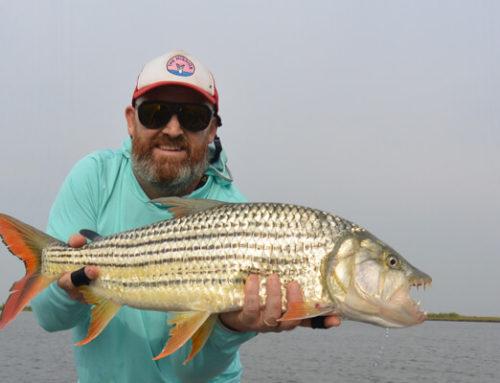 Fishing Q & A with Tudor Caradoc-Davis